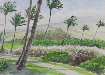 ハワイ島(1).jpg