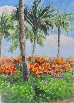 ハワイ島(3).jpg