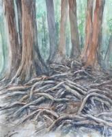 鞍馬の木の根道.jpg